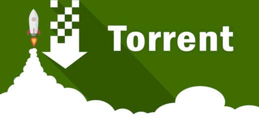 motore di ricerca torrent