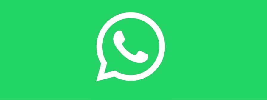 whatsapp to web - WHATSAPP TO WEB: COME FUNZIONA, COS'È E COME USARLO