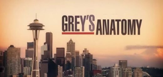 grey's anatomy streaming ita la serie